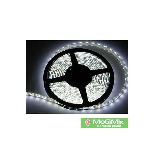 Светкомплект Лента светодиодная 3528 120 диодов белый (30229129)